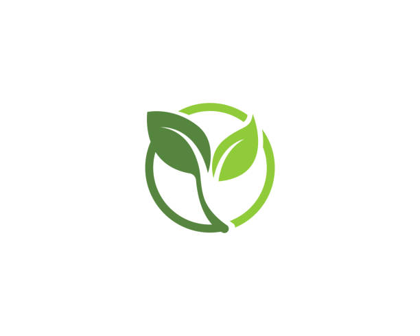 leaf go green nature logo - sustainability stock illustrations