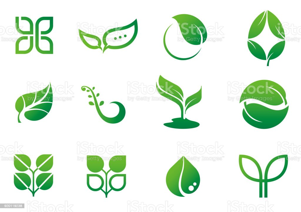leaf icon logo set vector art illustration