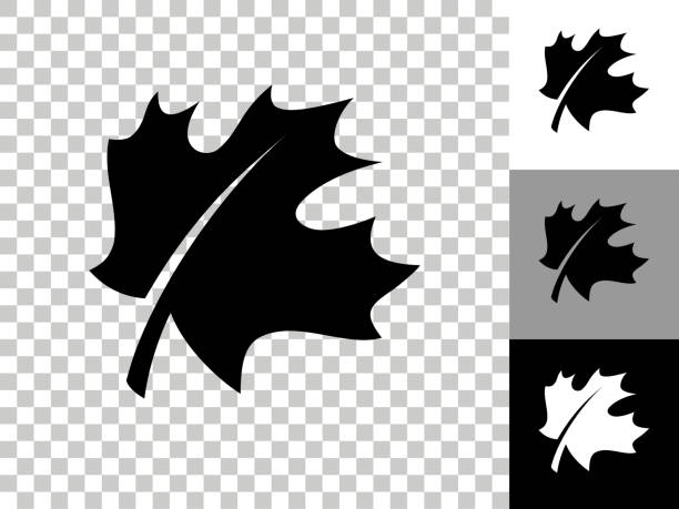 Leaf Icon on Checkerboard Transparent Background vector art illustration