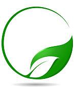 Leaf symbol with copy space.