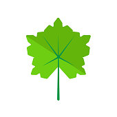 Leaf icon vector sign and symbol isolated on white background, Leaf logo concept