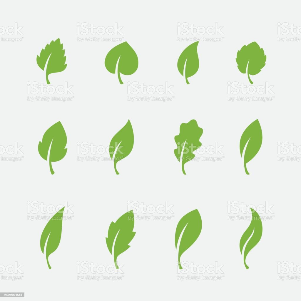 Leaf icons set on white background vector art illustration