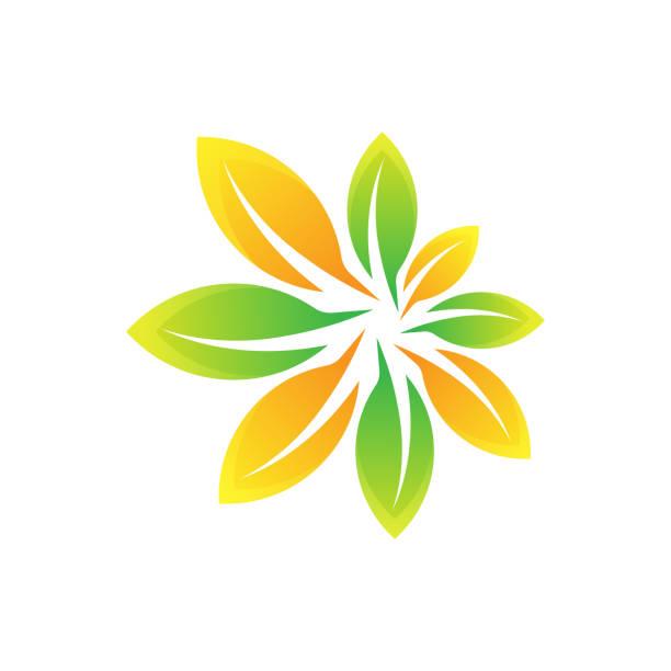 ilustrações, clipart, desenhos animados e ícones de ilustração vetorial de design do logotipo da folha. resumo folha logo vetor em conceito de design criativo para natureza, agricultura e negócios agrícolas. logotipo da folha da árvore, ícone, ilustração de design de vetor de símbolos e símbolos - conceitos e temas