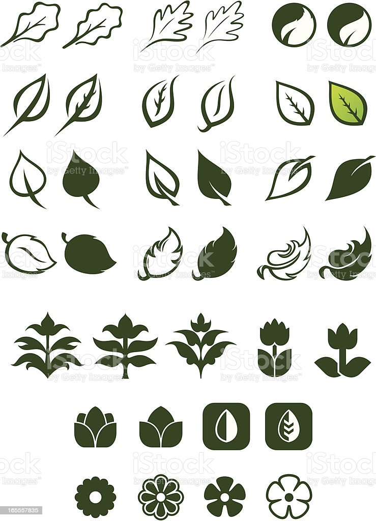 Leaf Logos Vector Set 2 royalty-free leaf logos vector set 2 stock vector art & more images of autumn