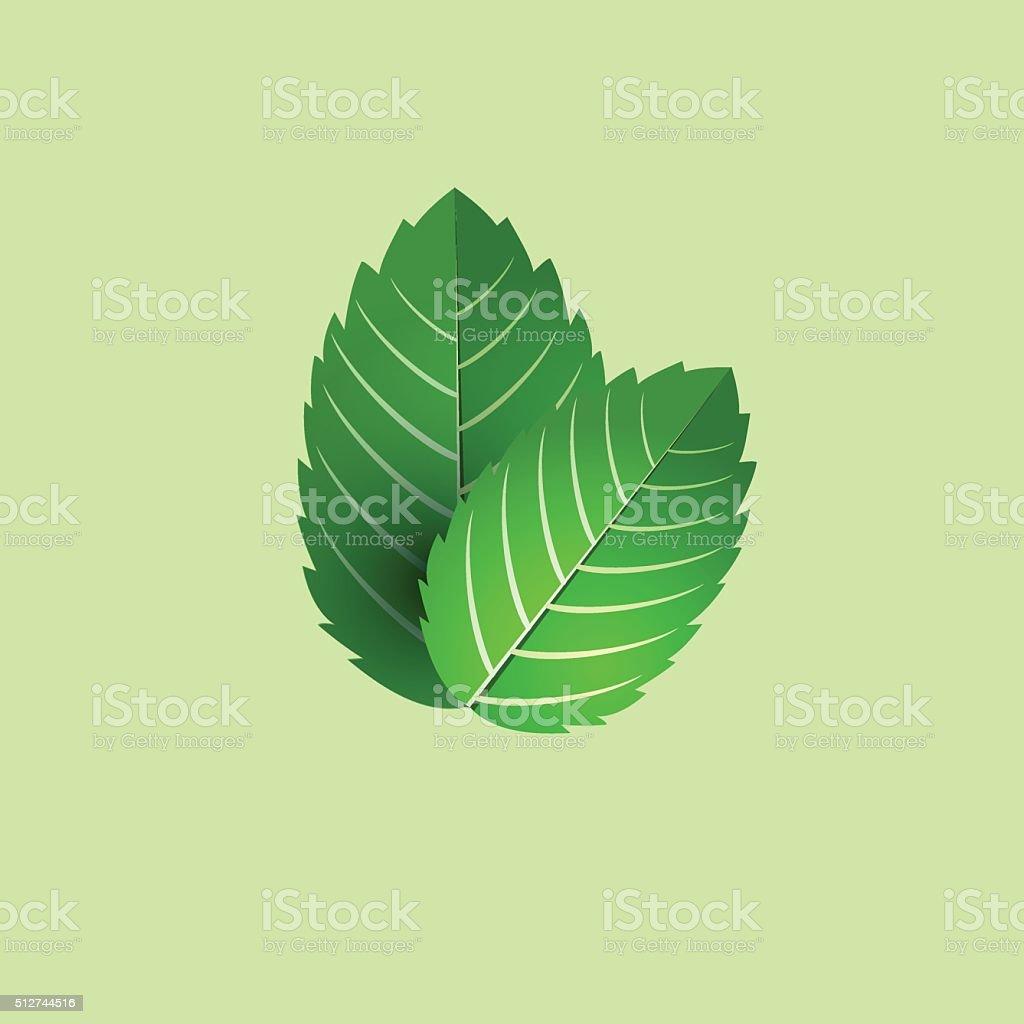 leaf of fresh mint. bunch of mint vector object. vector art illustration