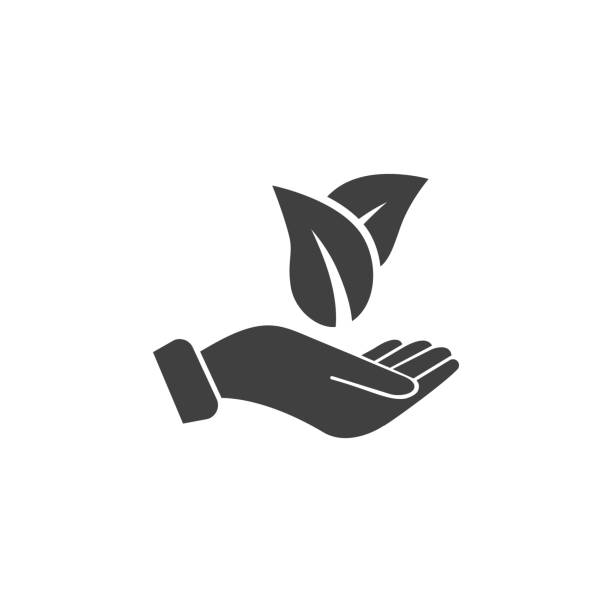 stockillustraties, clipart, cartoons en iconen met bladeren op het pictogram van een hand op de witte achtergrond - hand