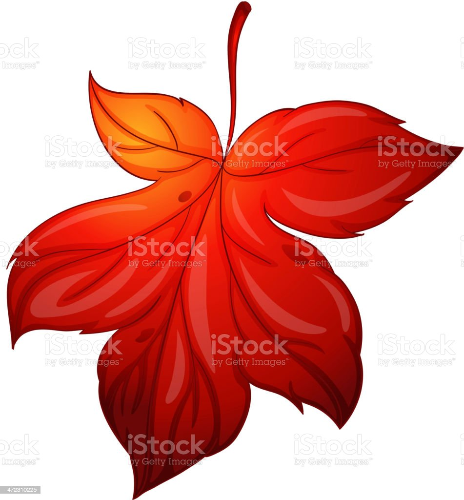 Leaf on white royalty-free stock vector art