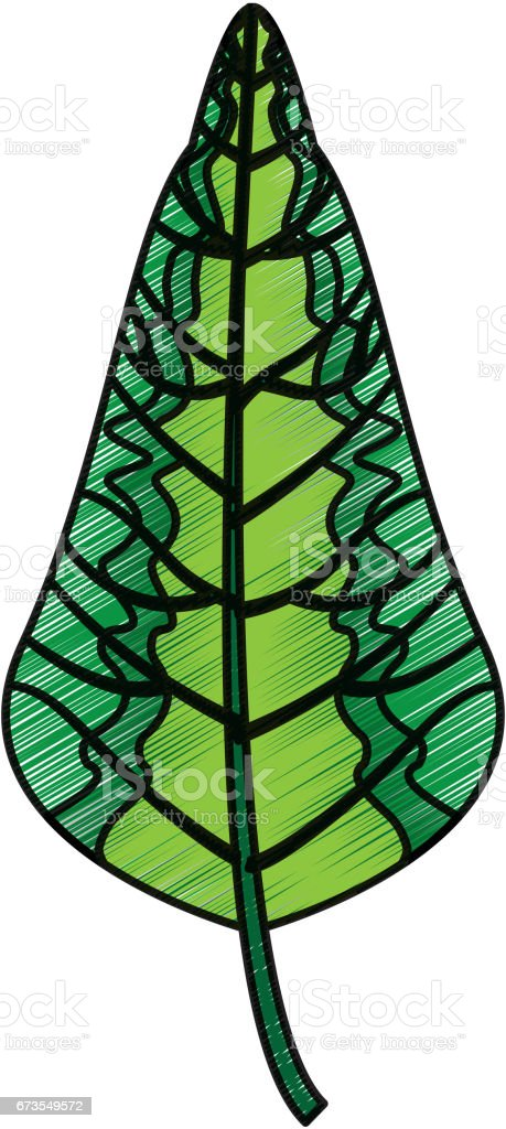leaf plant decorative isolated icon royalty-free leaf plant decorative isolated icon stock vector art & more images of arts culture and entertainment