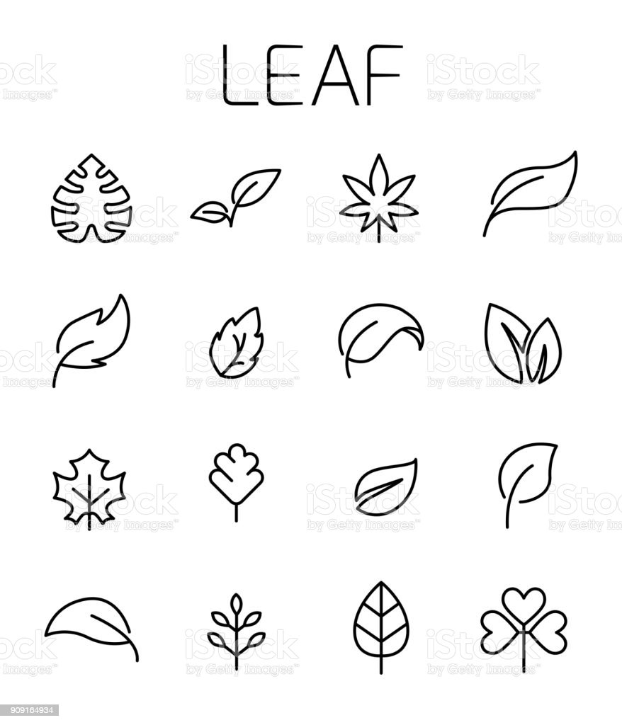 Leaf related vector icon set. vector art illustration