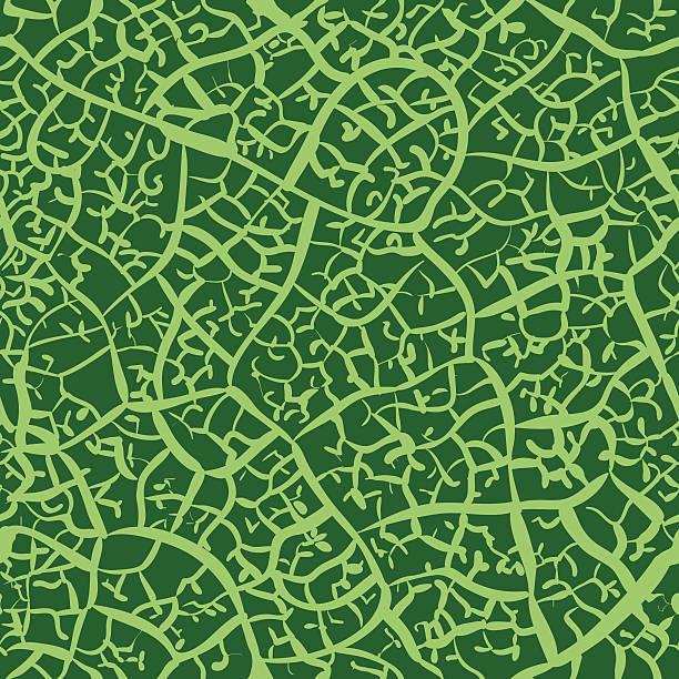 Leaf - Seamless Texture vector art illustration