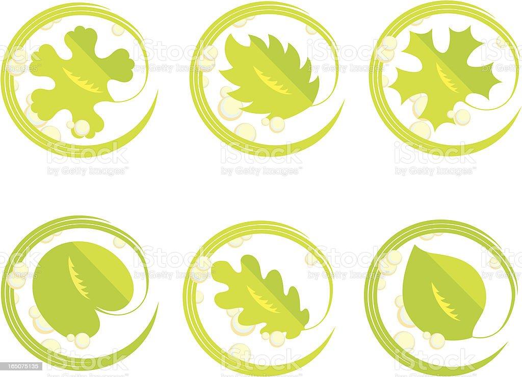 Leaf symbol set vector art illustration