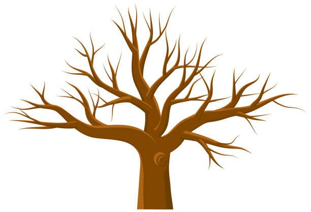 Leafless large tree vector vector art illustration