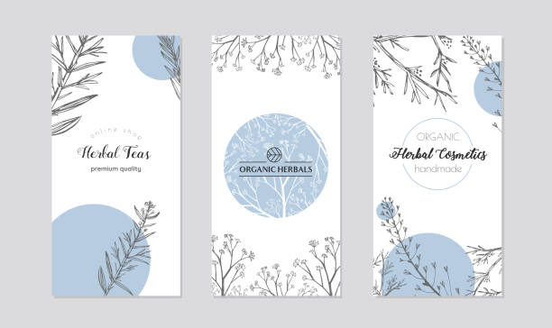 leaflets with healing herb plants vector. - лекарственная трава stock illustrations