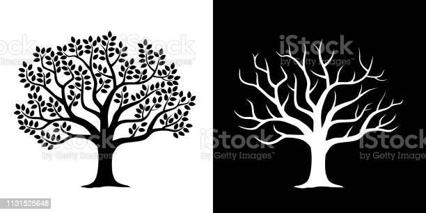 Leafy tree and scattered tree illustration set vector id1131525648?b=1&k=6&m=1131525648&s=612x612&h=jfpi5tq864itdt6tnen05wbfihxhadgdmgvs47egnmk=