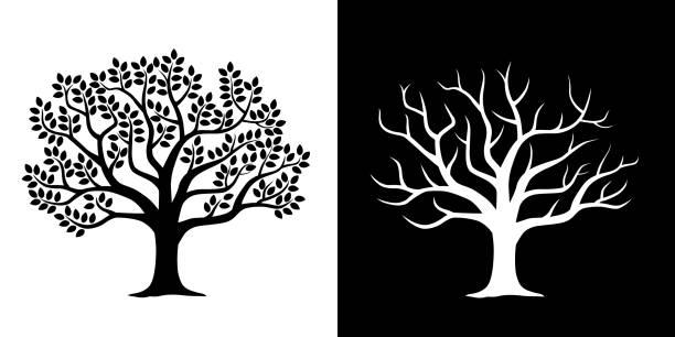 ilustraciones, imágenes clip art, dibujos animados e iconos de stock de árbol frondoso y conjunto de ilustraciones de árboles dispersos - árbol