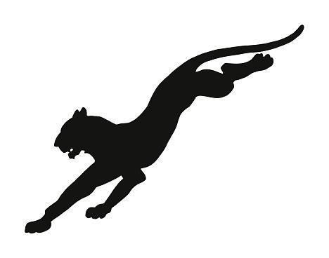 Leaping Wildcat