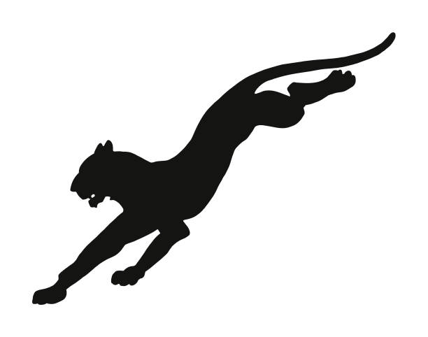 leaping wildcat - jaguar stock illustrations