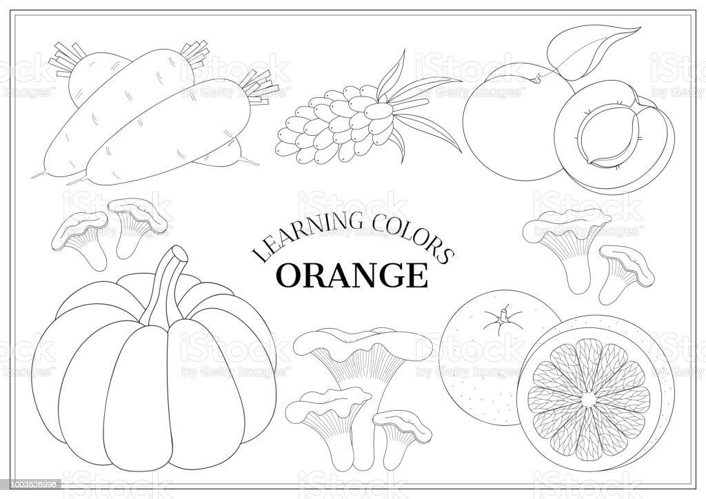 Ilustración de Aprendiendo Los Colores Naranja Página De Libro Para ...