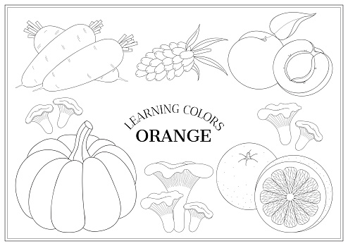 Learning Colors Orange Coloring Book Page For Preschool Children