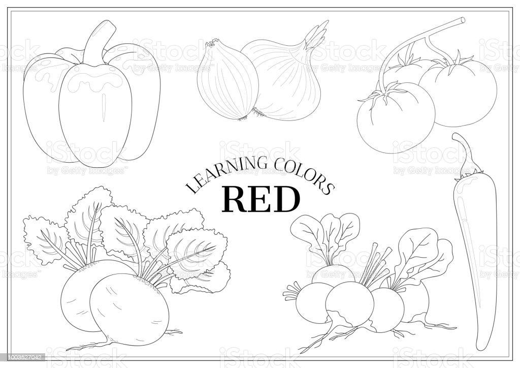 Renkler Kırmızı öğrenme Anahatları Sebze Ile Okul öncesi çocuklar