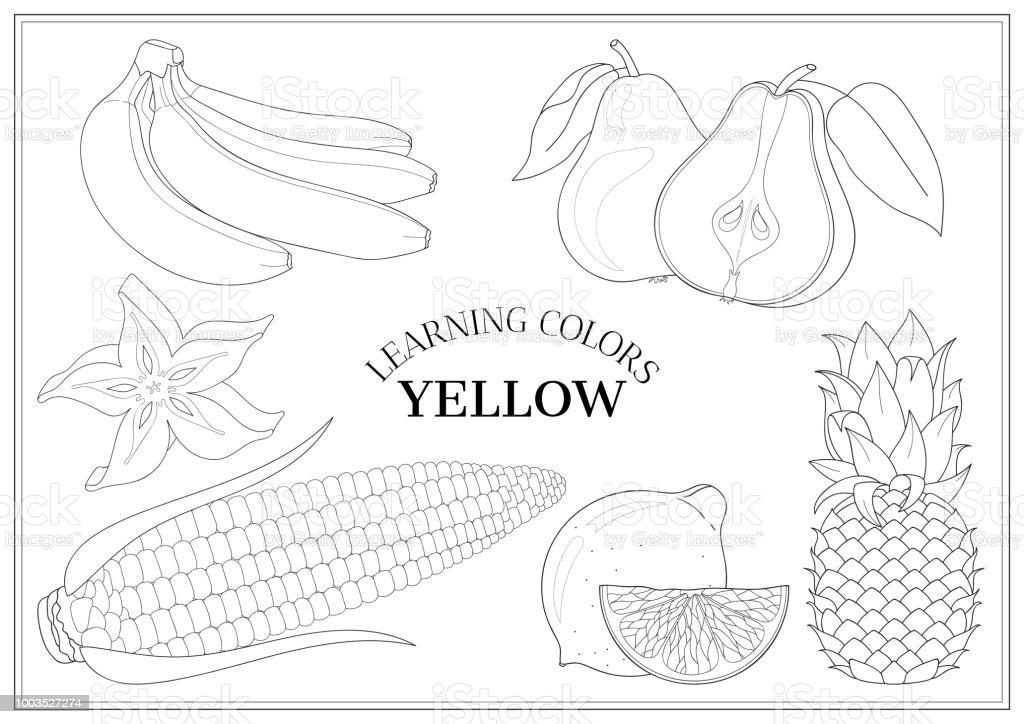 Ilustración de Aprendiendo Los Colores Amarillo Libro De Colorear ...