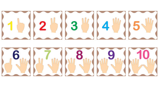 Learning numbers, mathematics with fingers of hand. Flash cards with numbers from 1 to 10, set. Game for children. Vector illustration. Learning numbers, mathematics with fingers of hand. Flash cards with numbers from 1 to 10, set. Game for children. Vector illustration. counting stock illustrations