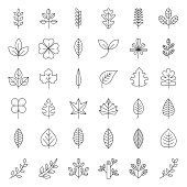 Leaves and branch icon set, thin line design