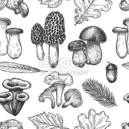 Leaves and mushrooms pattern. Hand drawn different autumn leaf, berries and mushrooms, vintage fall season sketch seamless vector texture.