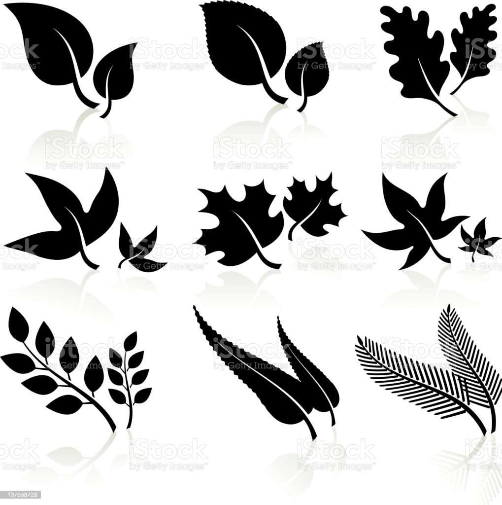 leaves black and white royalty-free leaves black and white stock vector art & more images of antioxidant