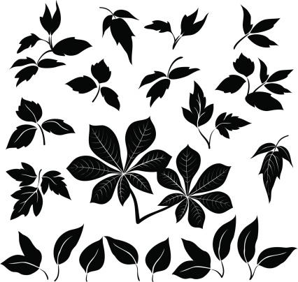 Leaves, black silhouettes