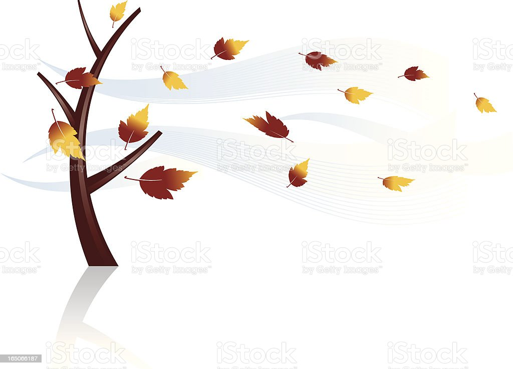 Leaves Blowing Stock Vector Art & More Images of Autumn ...