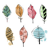 Vector illustration of a set of leaves. Pencil drawing and watercolor paintings