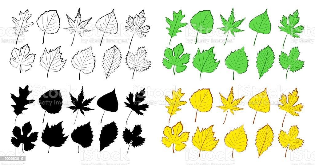 Leaves from trees. vector art illustration