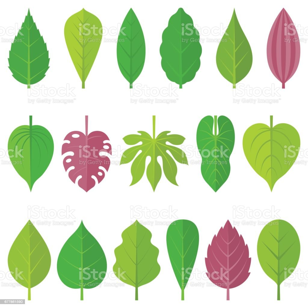 leaves icon set royalty-free leaves icon set stock vector art & more images of autumn