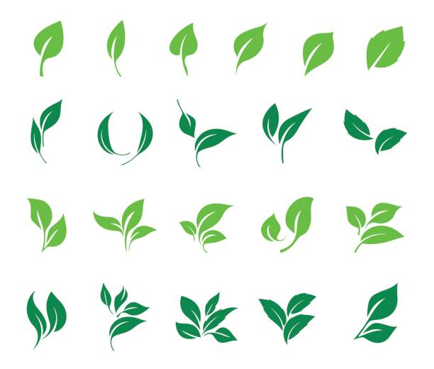 Leaves icon vector set. Ecology icon set. Leaves icon vector set isolated on white background. Ecology icon set. land feature stock illustrations