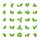 Leaves Icon - Vector Stock Illustration. Leaf Shapes Collection