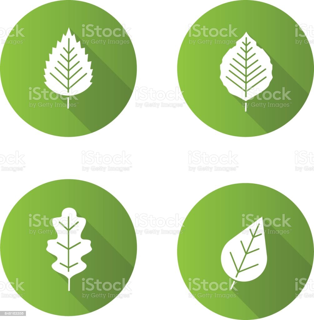 Leaves icons vector art illustration