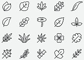 Leaves Line Icons