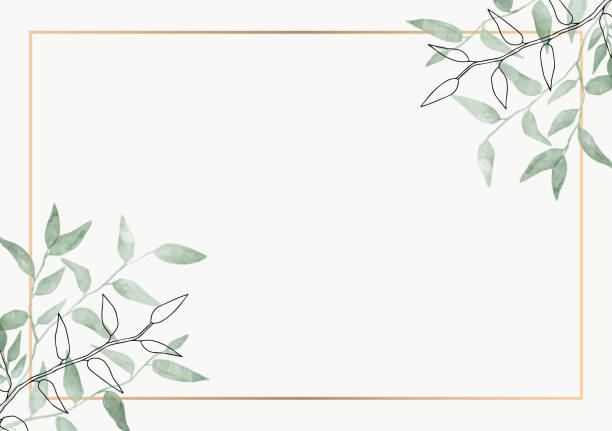 Leaves minimalistic vector frame. Hand drawing plants, branches, Herbal. Greenery wedding square invitation. leaf, Gold line. Watercolor, line drawing style. Modern neutral design for poster, card. Vector design illustrations. lush foliage stock illustrations