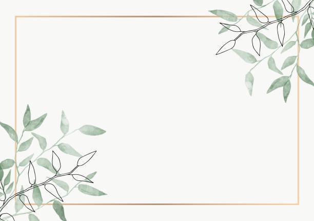 bildbanksillustrationer, clip art samt tecknat material och ikoner med lämnar minimalistisk vektorram. handrit växter, grenar, växtbaserade. grönska bröllop torget inbjudan. blad, guld linje. akvarell, linjeritningsstil. modern neutral design för affisch, kort. - blommönster