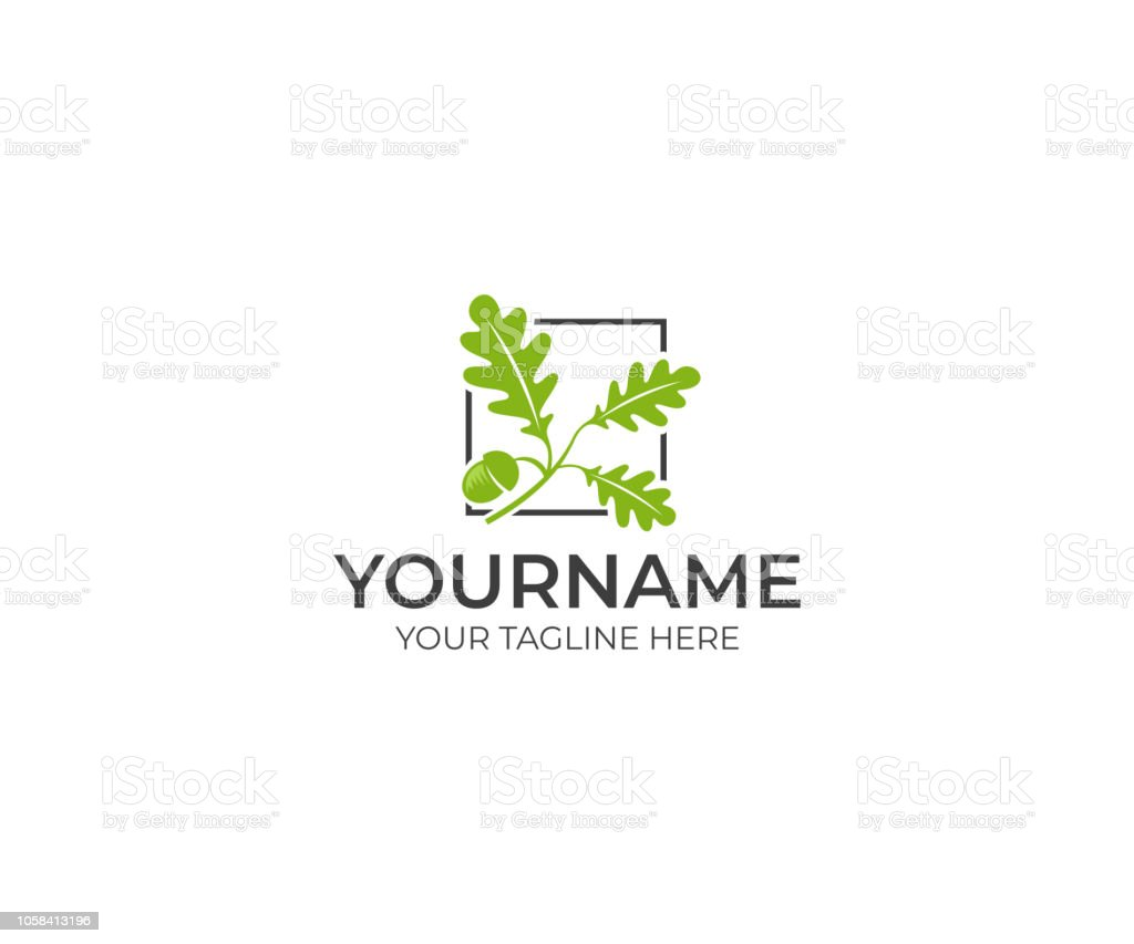 Leaves oak and acorn logo design. Oak tree vector design. Nature illustration