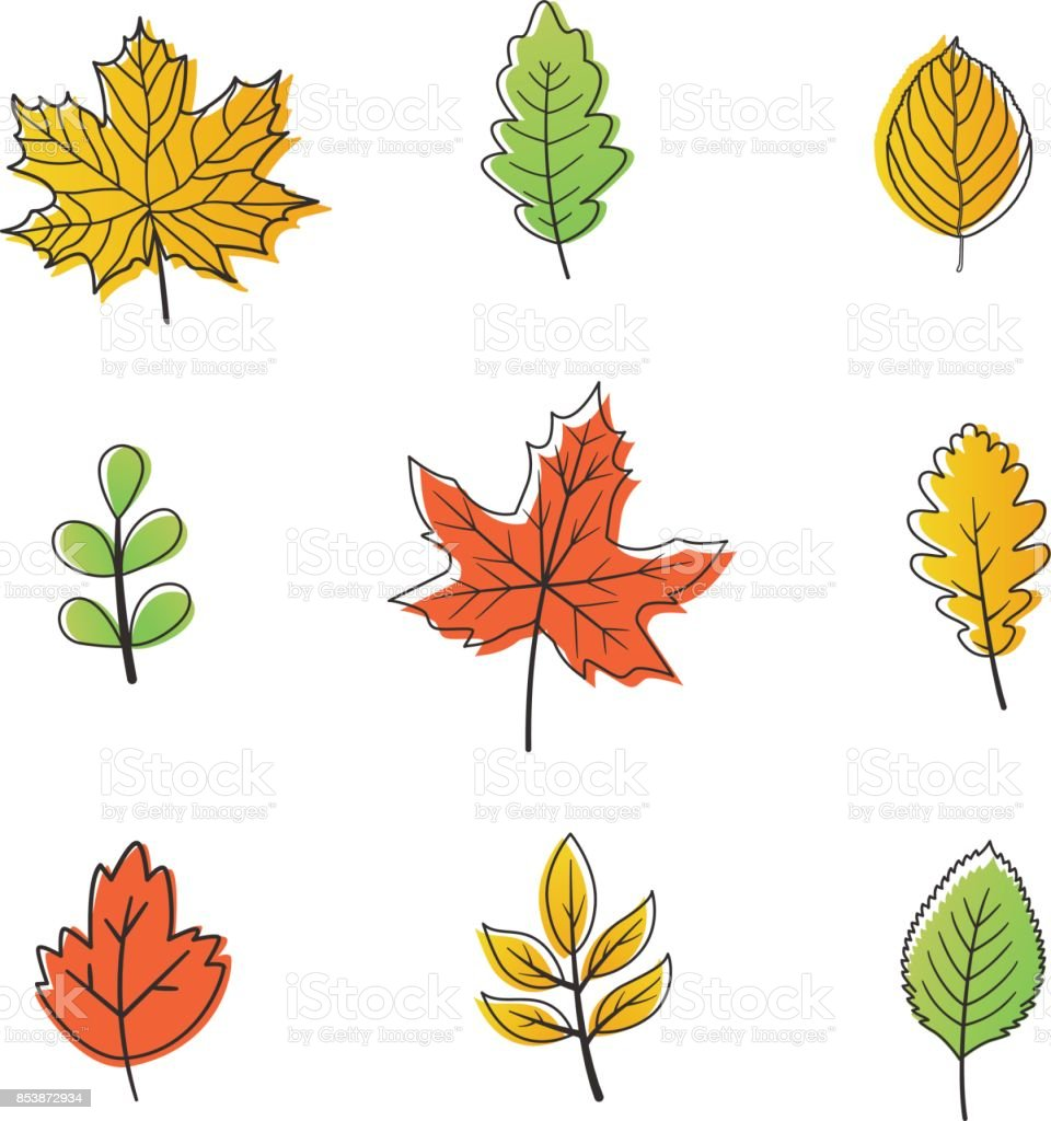 Leaves of autumn vector art illustration