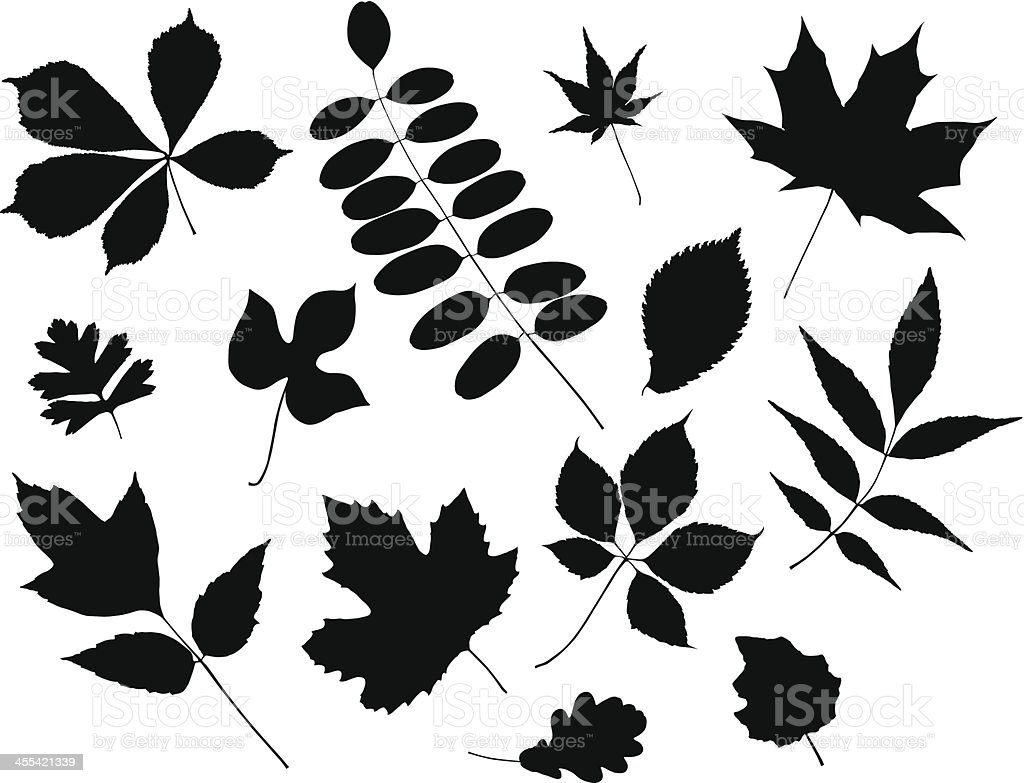 Leaves Silhouette royalty-free stock vector art