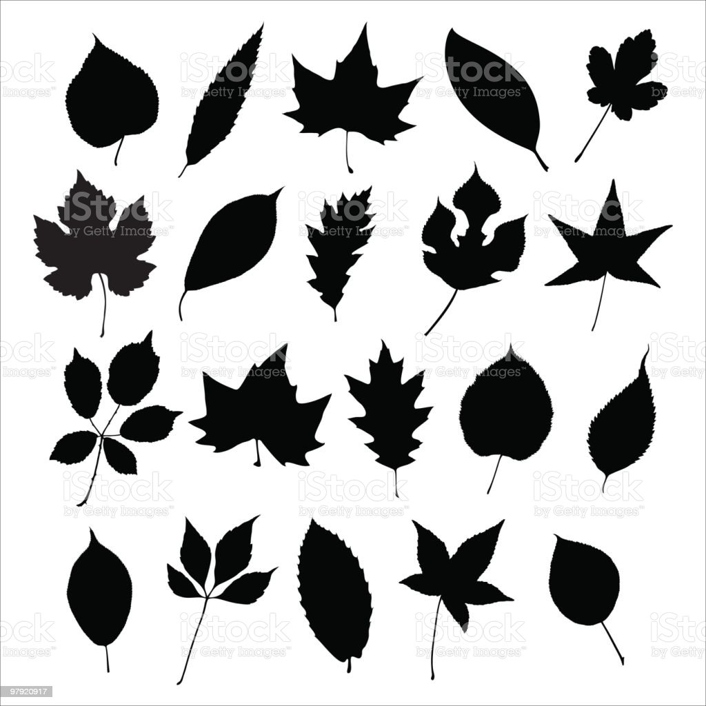 Leaves silhouette royalty-free leaves silhouette stock vector art & more images of autumn