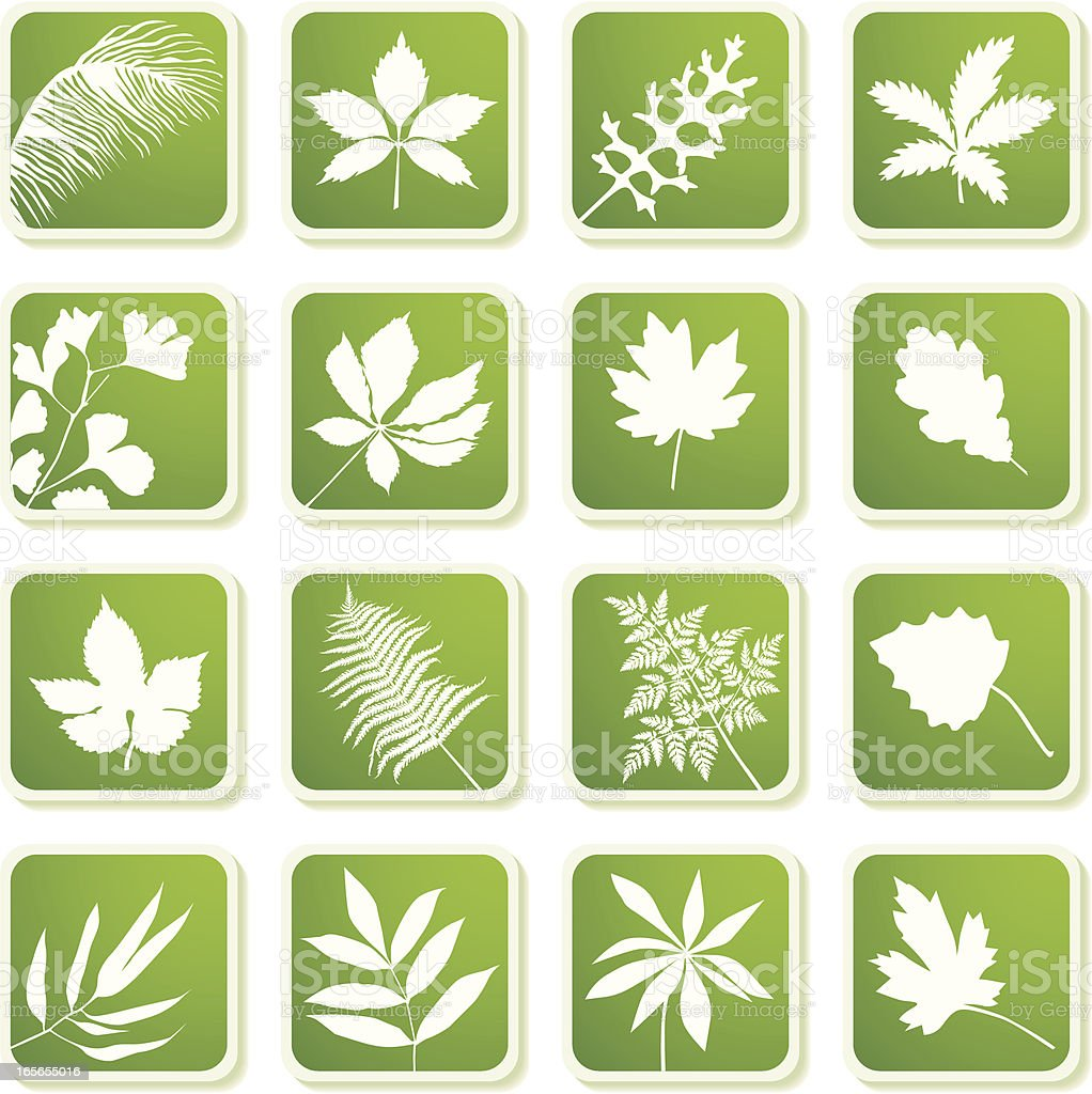 Leaves silhouettes icons vector art illustration