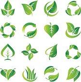 Leaves, icon set