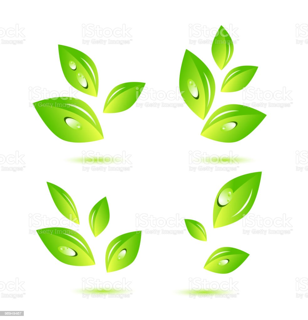 Leaves royalty-free leaves stock vector art & more images of color image