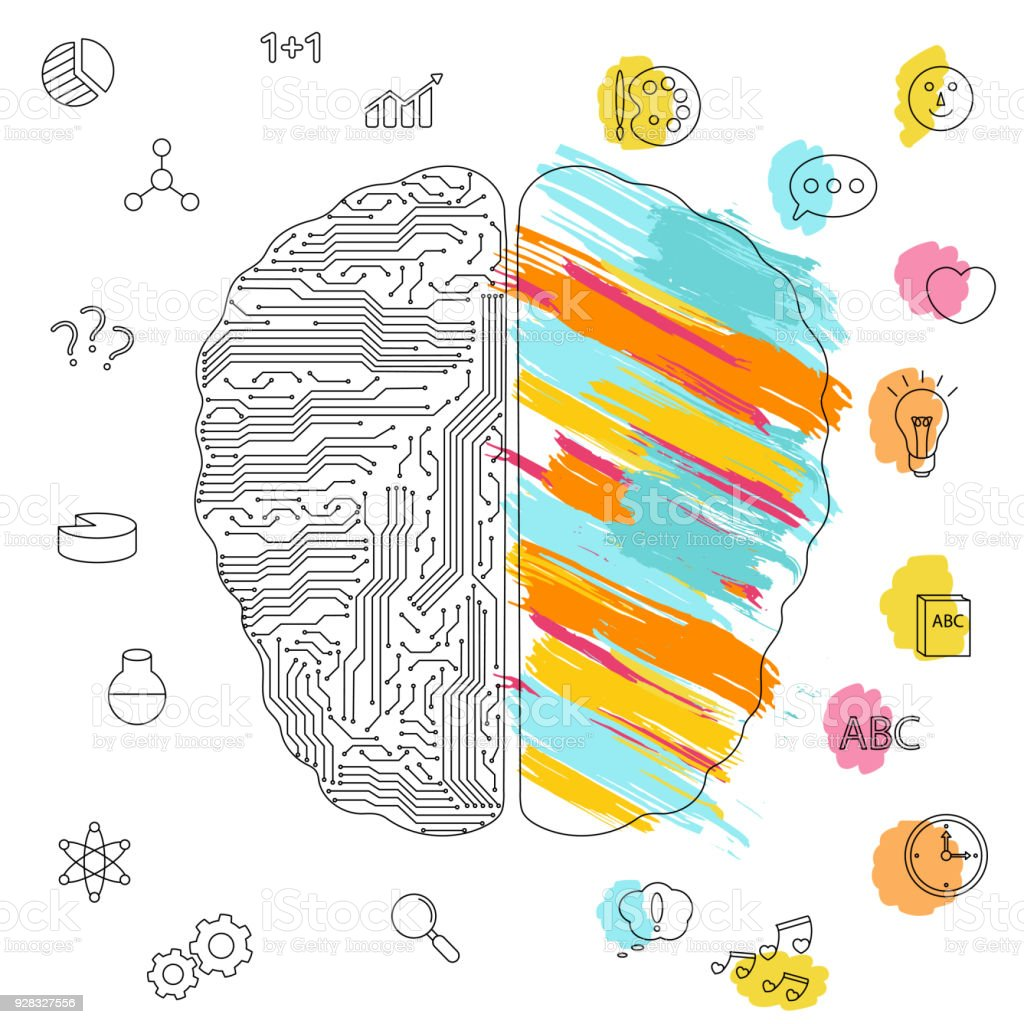 Left And Right Brain Functions Concept Stock Vector Art & More ...