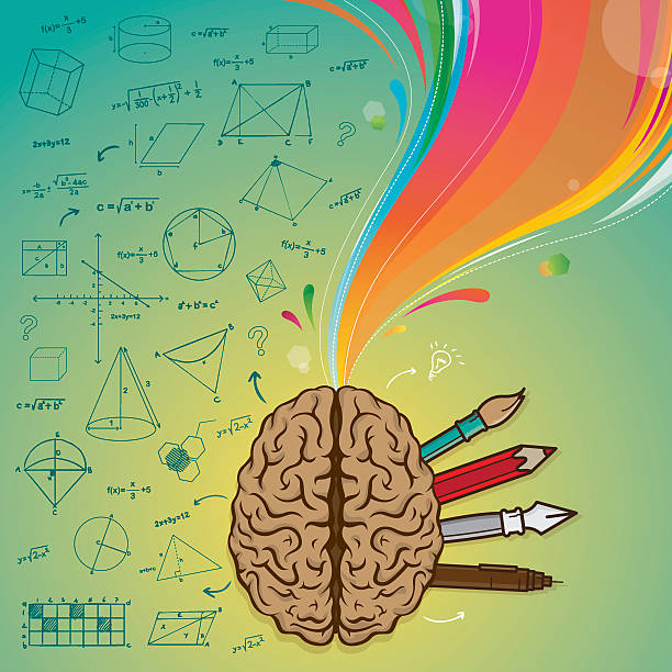 gehirn linke gehirn rechts - farbwahrnehmung stock-grafiken, -clipart, -cartoons und -symbole