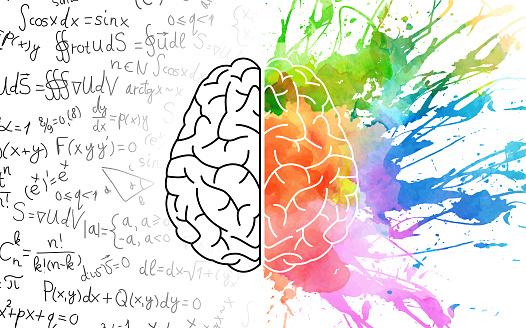 Left/right brain theory
